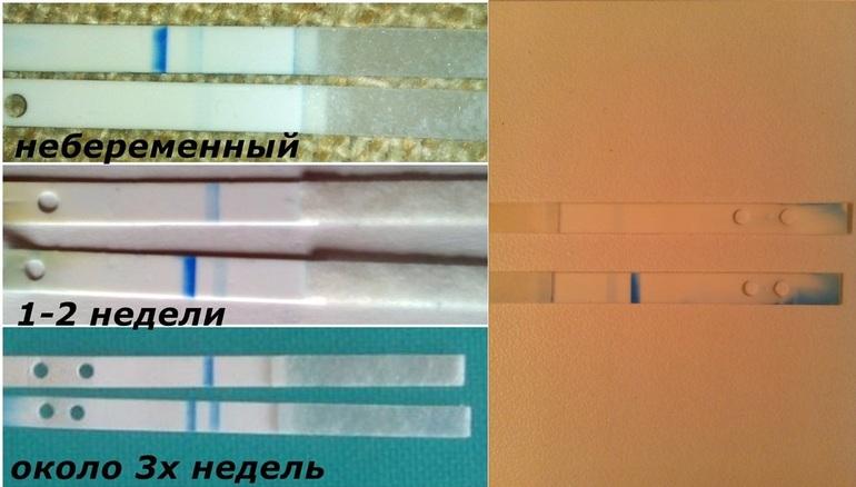 d36fb90be5d0c7c6661fb8480c4eaaa9.jpg