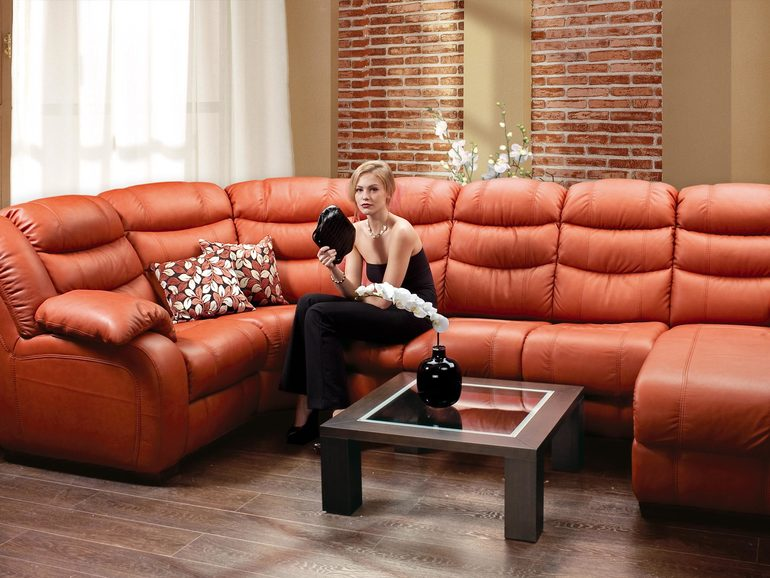 Ну вот решились наконец...диван заказали