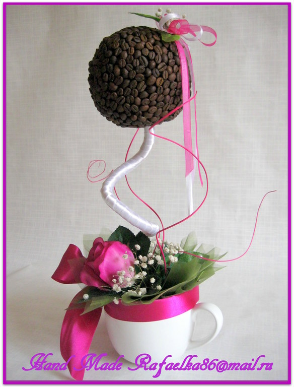 Кофейное деревце с розой