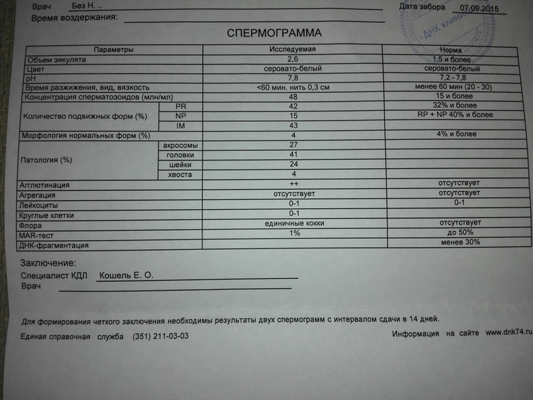 podgotovka-sdachi-spermogrammi