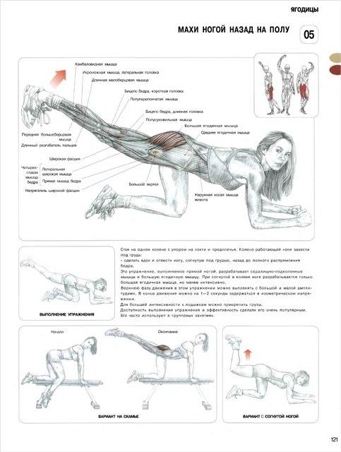 Упражнение для ног в домашних условиях девушке