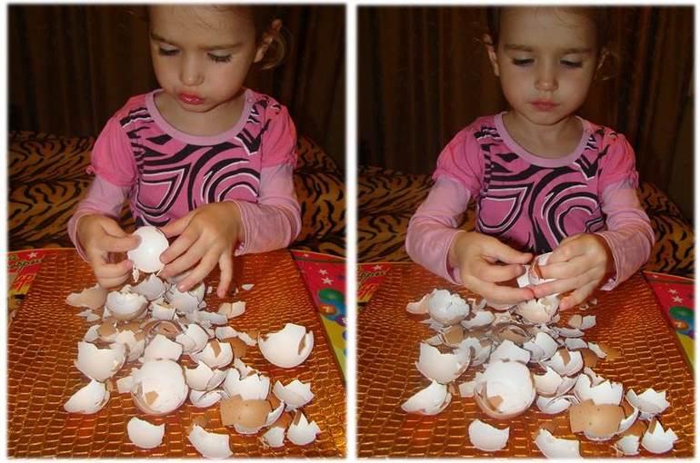 картинки из скорлупы яиц для детей