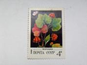 Марка 4к 1982 год СССР Морошка