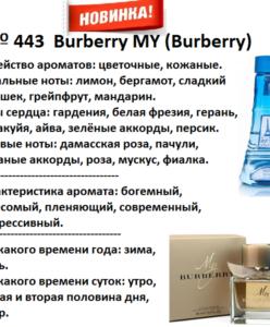 443 аромат направления Burberrys My (Burberry) (100 мл)