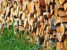 дрова берёзовые