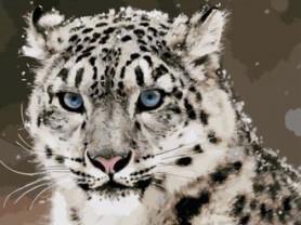 Картины по номерам GX 3759 Снежный леопард