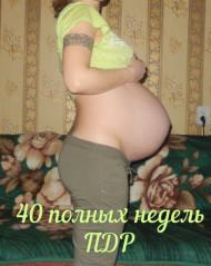 Фото 40 недели беременности