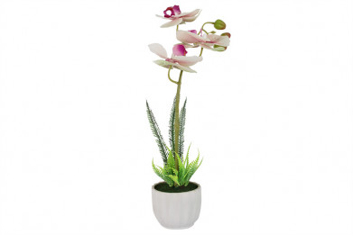 Декоративные цветы Орхидея бело-сиреневая в керам.вазе