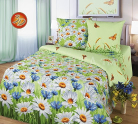 постельное белье Бязь 220 Размер 2сп с европростыней