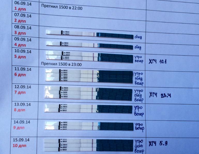Фото тестов после укола прегнила 1500