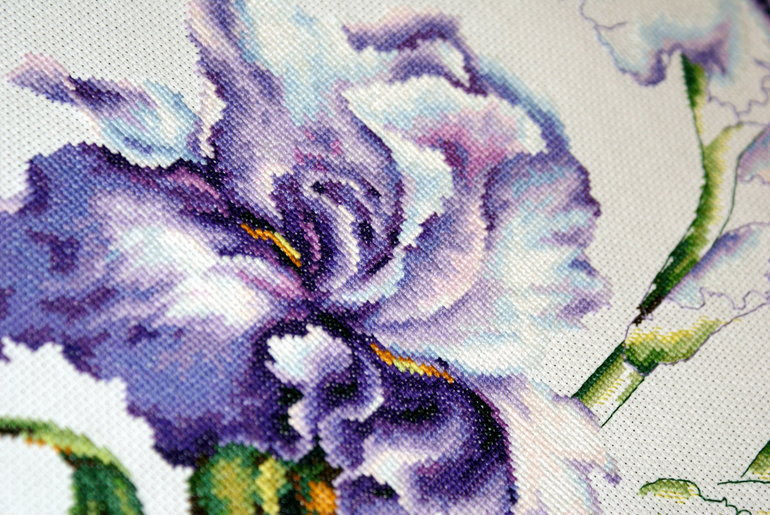 Оформление вышивки ирисы