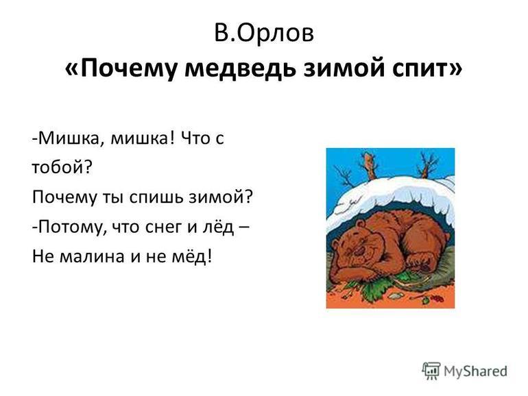 Почему медведь зимой спит текст орлов