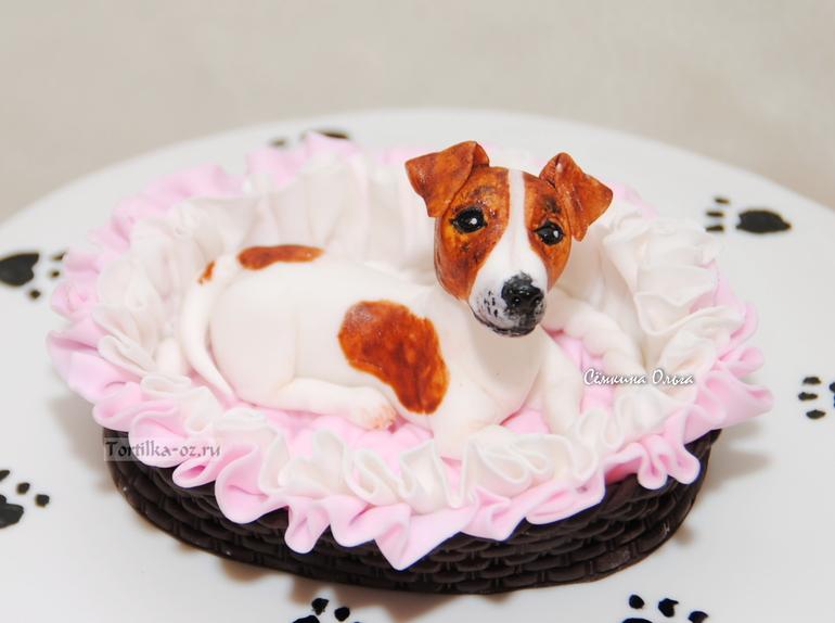 Торт собака фото#q=торт собака фото