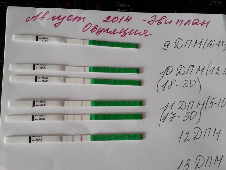 тему: Методи цикл 28 дней овуляция на 22 день халязион глазу