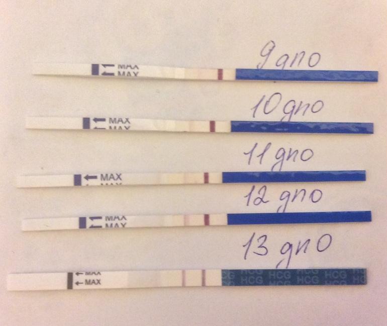 Тест на беременность на 4 недели