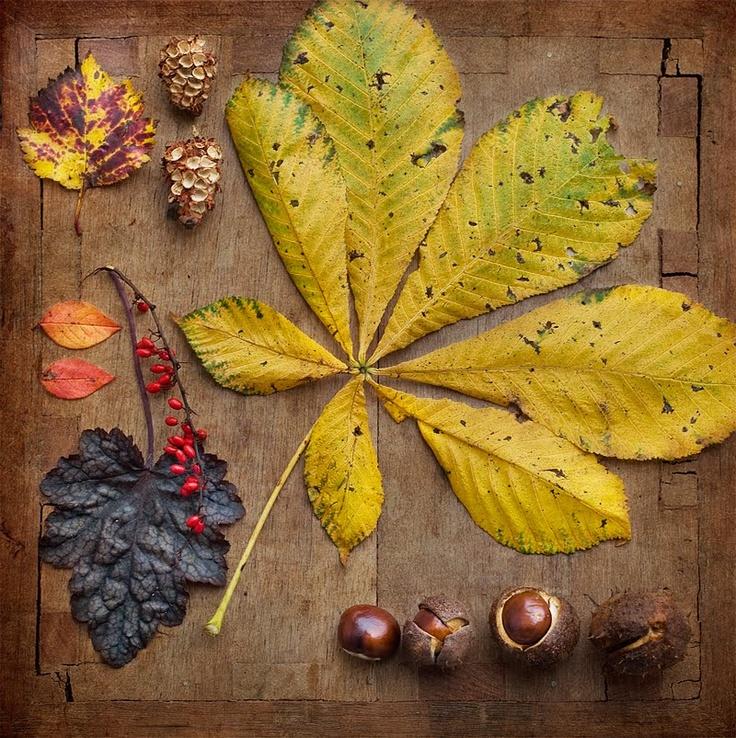 Осенняя поделка идея