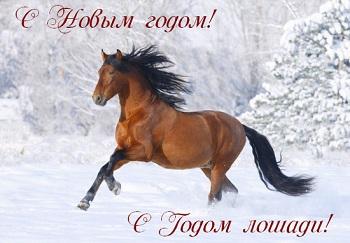 Всех ББ-чек с Наступающим Новым Годом!!!!!!!!!