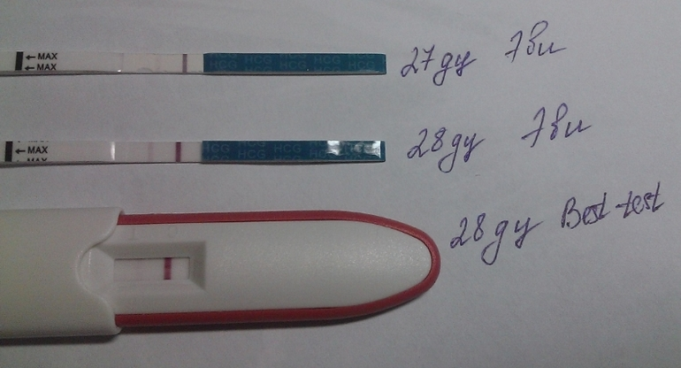 Питание беременной на 18-19 неделе 3