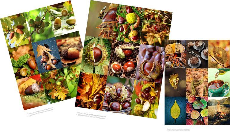 Картинки красивая осень 36 фото  Прикольные картинки и юмор