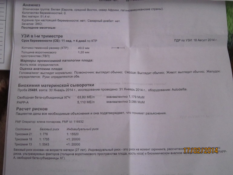 Скрининг 1 триместра, анализ крови Справка для работы в Москве и МО Шелепихинская набережная