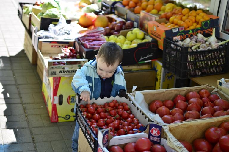 Как мы изучали овощи и фрукты