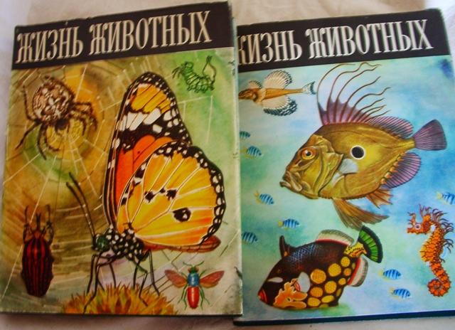 Книги  домашние б/у