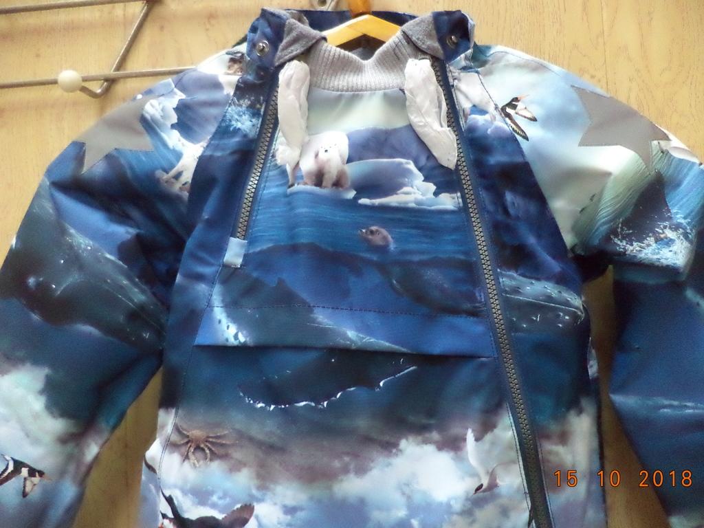 новая зимняя куртка MOLO Arctic (Дания) 128 р.