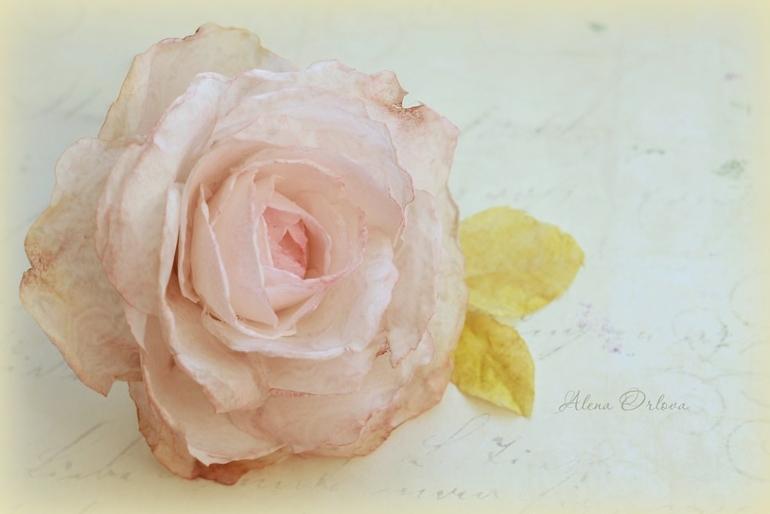 Цветы из вафельной бумаги своими руками 722