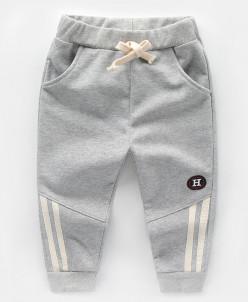 Брюки/спортивные штаны