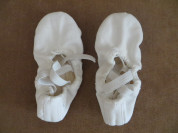 балетки-100 руб.15 см