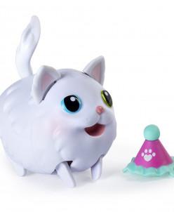 Chubby Puppies & Friends, Ragdoll Cat