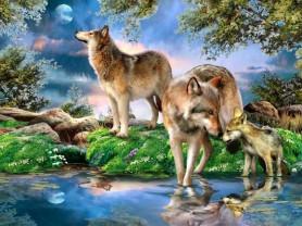 Картины по номерам GX 3922 Волчья стая