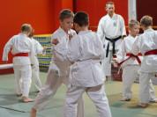 Занятия каратэ для детей на Войковской