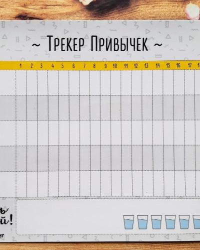 """Магнитный ТРЕКЕР ПРИВЫЧЕК """"Берись и делай"""", 148х210"""