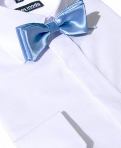Бабочка светло-голубая
