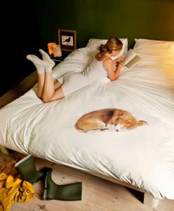 Комплект постельного белья Собачка Боб, 2-х спальный