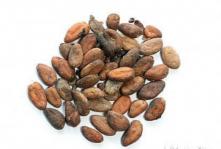 200 гр Какао-бобы сорта Форастеро, неочищенные, отборные