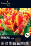 тюльпан махровый ранний Силеста (15)