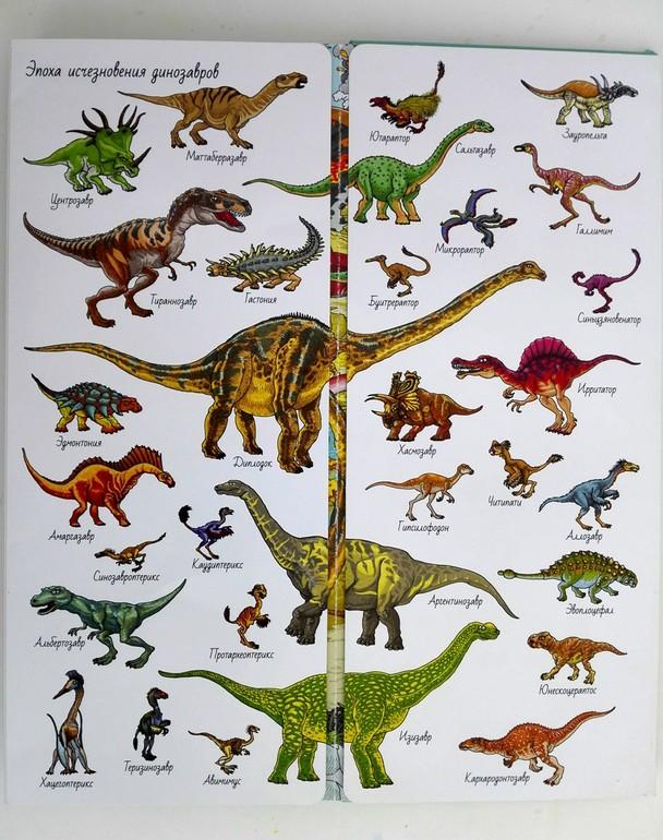 Названия динозавров по картинке