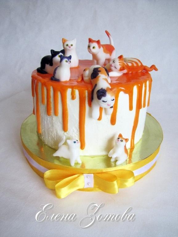 Торт с котятами фото