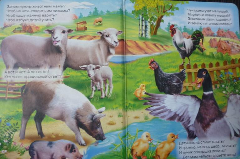 игры 94 свинья