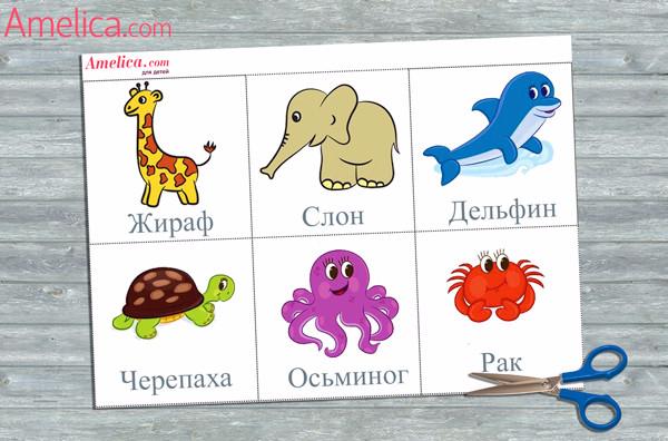 Обучающие карточки-картинки для малышей | сайт ...