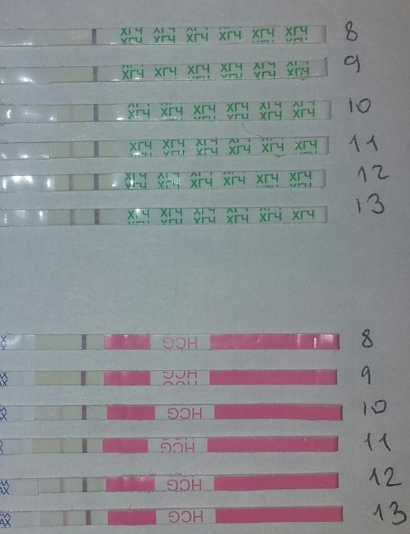 В случае эко зачатия стандартные значения показателей в анализе крови, на которые ориентируются лаборатории, применимы не всегда.