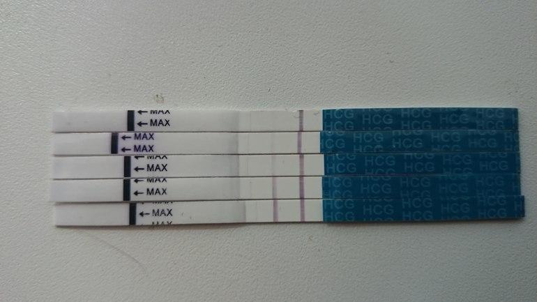 Тест эви
